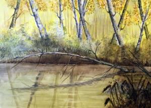 Árbol sobre el Rio Júcar